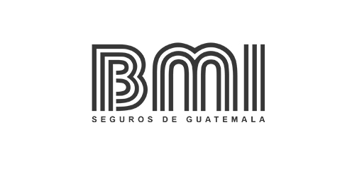 Seguros-BMI-Bluemedical