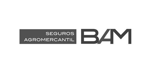 Seguros-bam-Bluemedical